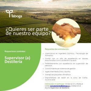 Oferta de empleo: Supervisor (a) Destilería